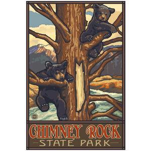 Chimney Rock State Park North Carolina Two Bear Cubs