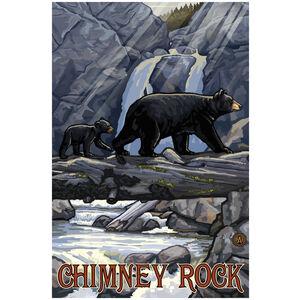 Chimney Rock State Park North Carolina Bear On Log