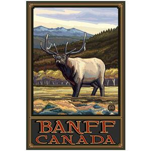 Banff Canada Whistling Elk Hills