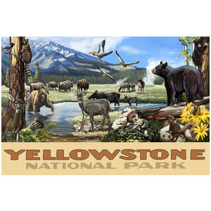 The Wildlife Of Yellowstone National Park