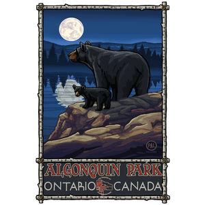 Algonquin Park Ontario Canada Bear Lake Moon Hills