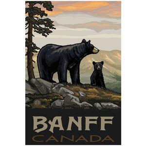 Banff Canada Black Bear Family