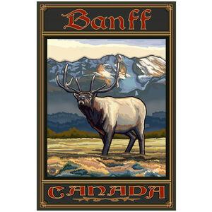 Banff Canada Whistling Elk