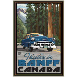 Banff Canada Road Trip Woods