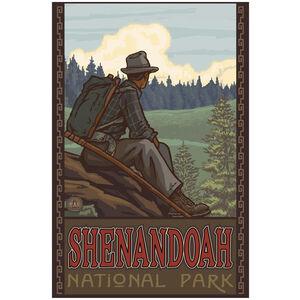 Shenandoah National Park Mountain Hiker Man Forest