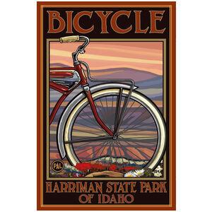 Harriman State Park Idaho Old Half Bike