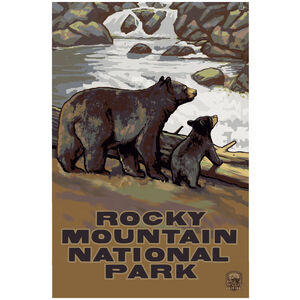 Rocky Mountain National Park Bear Cub Falls