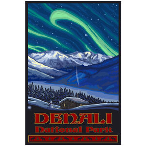 Denali National Park Alaska Northern Lights