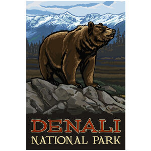 Denali National Park Grizzly Bear Rocks