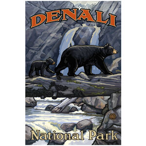 Denali National Park Bears On Log