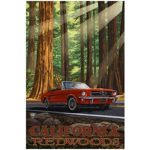 California Redwoods Classic Mustang