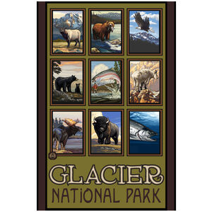 Glacier National Park Animal Collage