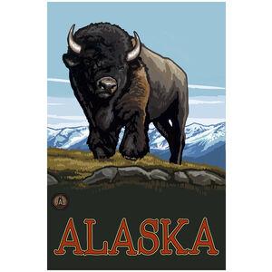 Alaska Buffalo Mountains