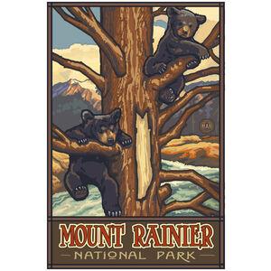 Mount Rainier National Park Two Bear Cubs