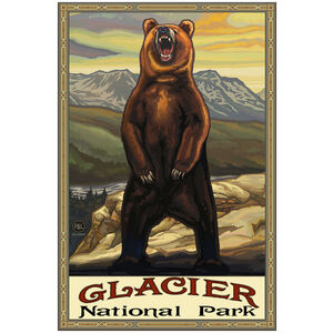 Glacier National Park Grizzly Bear Yellow
