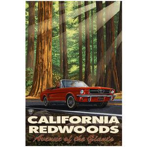 California Redwood Highway Mustang