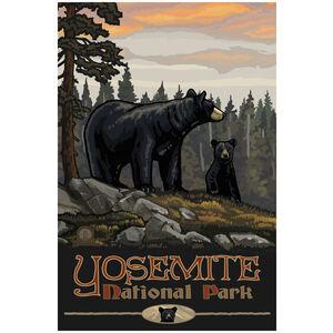 Yosemite National Park Black Bear Family Forest