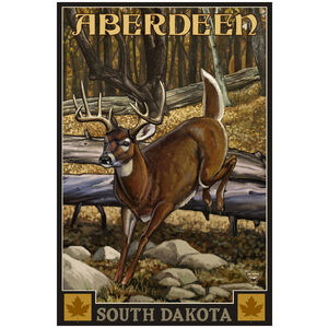 Aberdeen South Dakota Whitetail Deer