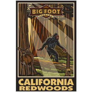 California Redwoods Big Foot Country