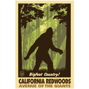 California Redwood Avenue of the Giants Big Foot Shadow