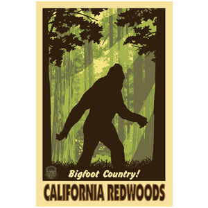 California Redwoods Big Foot Shadow