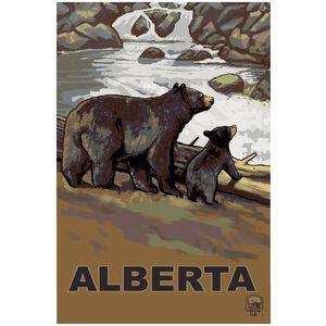 Alberta Canada Bear Cub Falls
