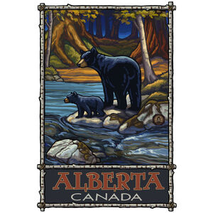 Alberta Canada Bears In Stream