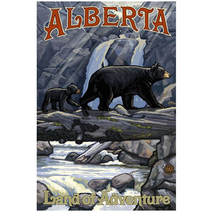 Alberta Canada Bears On Log