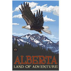 Alberta Canada Eagle Soaring