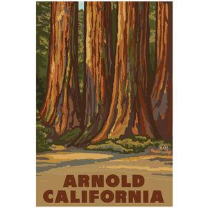 Arnold California California Redwoods Trees