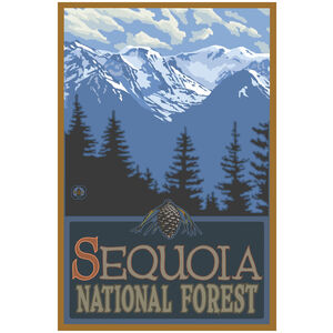 Sequoia National Forest California