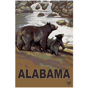 Alabama Bear Cub Falls