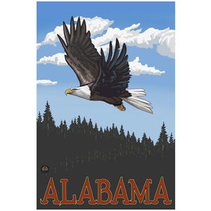 Alabama Eagle Soaring Forest