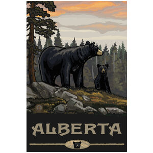 Alberta Canada Black Bear Family Forest