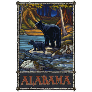 Alabama Bears In Stream