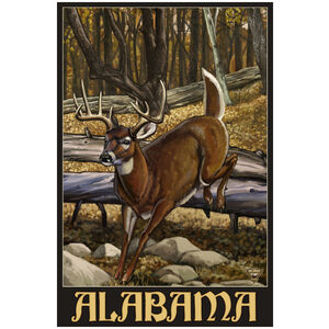 Alabama Whitetail Deer
