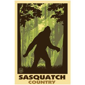 Sasquatch Country Bigfoot Shadow