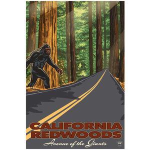 Bigfoot Road A of G