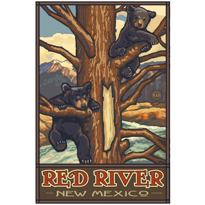 Red River New Mexico
