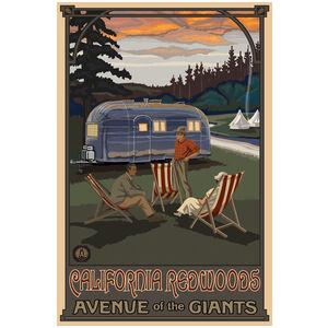 California Redwoods Camping