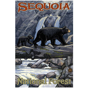 Sequoia National Forest California Bear on Log
