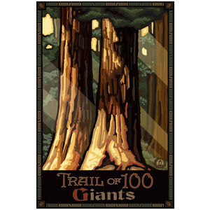 Sequoia National Park California Trail of 100 Giants