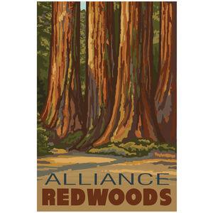 Alliance Redwoods The Senate California