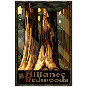 Alliance Redwoods California