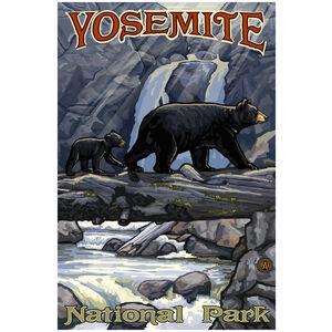 Yosemite National Park California Bear on Log