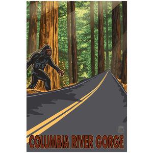 Bigfoot Road Crossing Columbia River Gorge Oregon