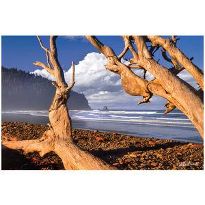 Cape Meares Beach, Tillamook County Oregon