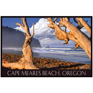 Cape Meares Beach