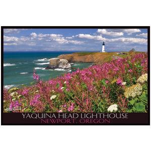 Yaquina Head LH