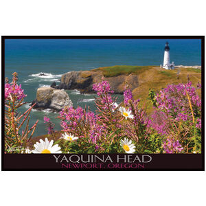 Yaquina Head flowers